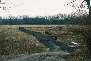 A jogger loops between the community garden and a field of razed wheat.